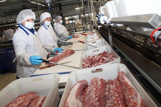 Новый мясоперерабатывающий комбинат