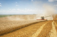 Coronavirus causing grain and oilseed market jitters